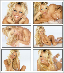 Pamela Anderson Screensaver
