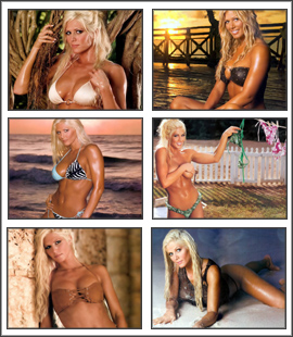 Torrie Wilson Screensaver